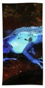 Blue Poison Dart Frog - Dendrobates Azureus Beach Towel