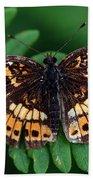Blue Ridge Butterfly Beach Towel