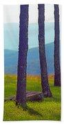 Blue Ridge Mountains Of Virginia Beach Towel