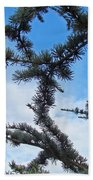 Blue Sky Art Prints White Clouds Conifer Pine Branches Baslee Troutman Beach Towel