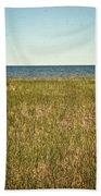 Blue Sky Green Grass Beach Towel