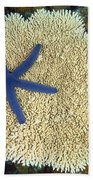 Blue Starfish Beach Towel