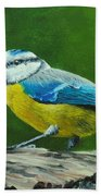 Blue Tit Bird Beach Towel