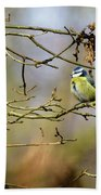 Blue Tit Woods Beach Towel