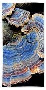 Blue Turkeytail Fungi Beach Sheet