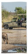 Blue Wildebeest Beside Puddle With Jeep Behind Beach Towel