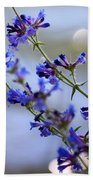 Blue Wildflowers Over Rimrock Lake Beach Towel