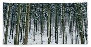 Blue Winter Forest Beach Sheet