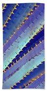 Blue Yucca Beach Towel