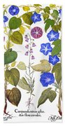 Bluebell And Morning Glory Beach Towel