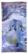 Bluebell Glade Beach Towel