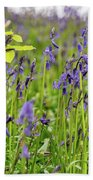Bluebells In Judy Woods Beach Towel