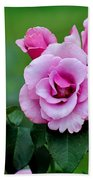 Blueberry Hill Roses Beach Towel