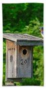 Bluebird With Grub Beach Towel