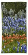 Bluebonnet Paintbrush And Prickly Pear Beach Towel