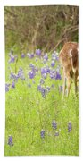Bluebonnets And Whitetails Beach Towel