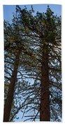 Bluff Lake Ca Through The Trees 3 Beach Towel