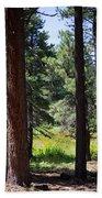 Bluff Lake Ca Through The Trees 7 Beach Towel