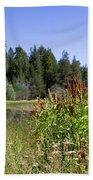Bluff Lake Foliage 4 Beach Sheet