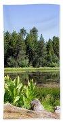 Bluff Lake Foliage 5 Beach Sheet
