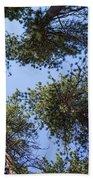 Bluff Lake Forest 2 Beach Sheet