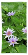 Blumen Des Wassers - Flowers Of The Water 22 Beach Towel
