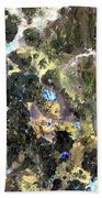 Bolivian Andes From Space Beach Towel