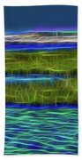 Bolsa Chica Wetlands I Abstract 1 Beach Towel