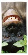 Bonobo Smiling Beach Towel