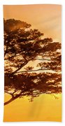 Bonsai Pine Sunrise Beach Towel