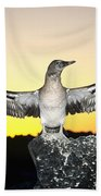 Booby At Sunset Beach Towel