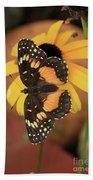 Bordered Patch Beach Towel