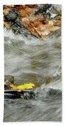 Boscobel Stream Beach Towel