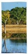 Bosque Del Apache - New Mexico Beach Towel