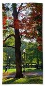 Boston Public Garden Autumn Tree Morning Light Walk In The Park Beach Towel