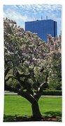 Boston Public Garden Spring Tree Boston Ma Beach Towel