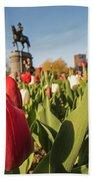 Boston Public Garden Tulips And George Washington Statue 2 Beach Towel