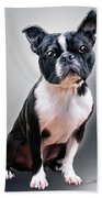 Boston Terrier By Spano Beach Towel