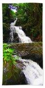 Botanic Gardens Waterfall Beach Towel