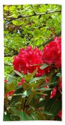 Botanical Garden Art Prints Red Rhodies Trees Baslee Troutman Beach Towel