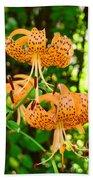 Botanical Master Gardens Art Prints Orange Tiger Lilies Baslee Troutman Beach Towel