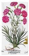 Botany: Flowers, 1613 Beach Towel
