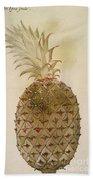 Botany: Pineapple, 1585 Beach Towel