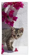 Bougainvillaea Tabby Beach Towel