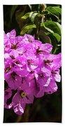 Bougainvillea Bloom Beach Sheet