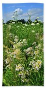 Bouquet Of Wildflowers Along Country Road In Mchenry County Beach Towel