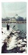 Boy Feeding Swans- Germany Beach Towel