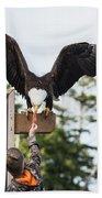 Boy Feeds Mr. Bald Eagle Beach Towel