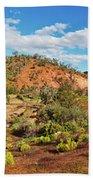 Bracchina Gorge Flinders Ranges South Australia Beach Towel