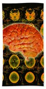 Brain Composite Beach Towel